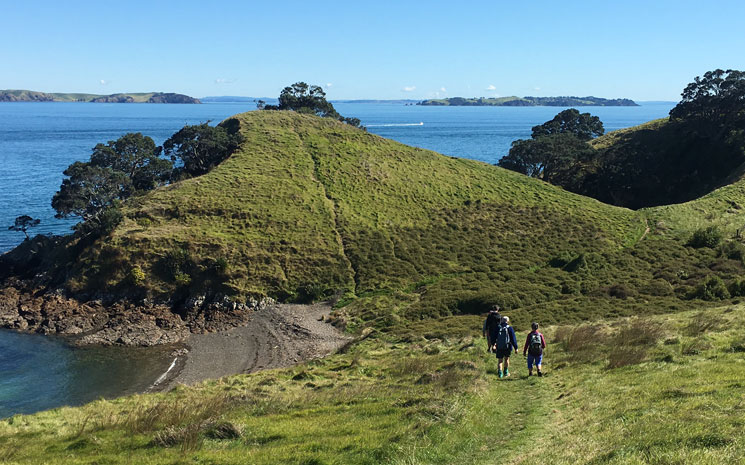 Walking on Waikehe Island with Walking By Nature