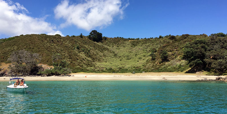Cactus Bay, Waiheke Island, on the Bush and Beach walk with Walking By Nature tours