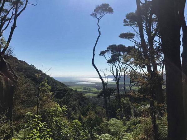 Great Barrier Island Eco Adventure for Women